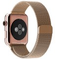 Apple Watch Band, with Unique Magnet Lock, JETech® 42mm Milanese Loop Stainless Steel Bracelet Strap Band for Apple Watch 42mm All Models No Buckle Needed (Rose Gold)